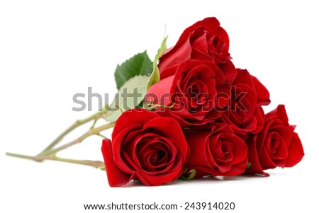 Gift roses - stock photo
