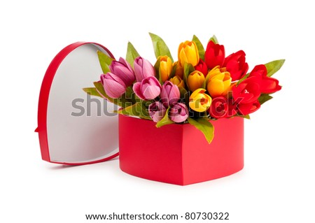 Giftbox and tulips isolated on white - stock photo