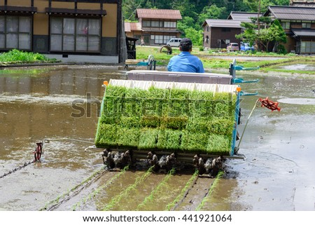 GIFU, JAPAN - MAY 16, 2016: An unidentified japanese farmer transplant paddy sprouts in the field with rice planting machine in Shirakawa-go, Gifu Prefecture, Japan.