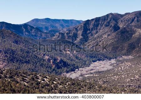 Gila River valley wilderness landscape in Gila Mountains National Forest, New Mexico, NM, US