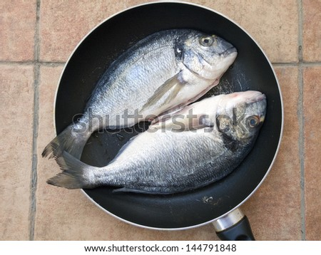Gilthead seabream fishes (Dourada or Sparus aurata) on the pan ready for cooking - stock photo