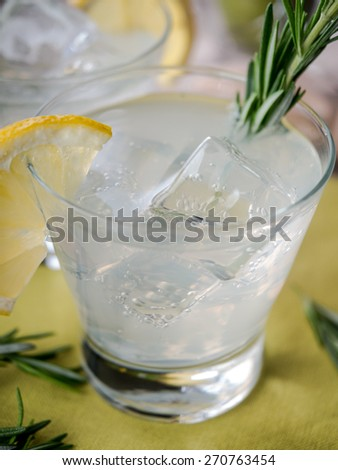 Gin and tonic with a slice of lemon and a sprig of rosemary - stock photo