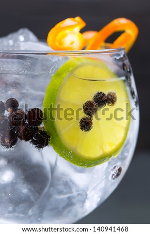Gin tonic cocktail macro closeup with juniper berries orange and lime slice - stock photo