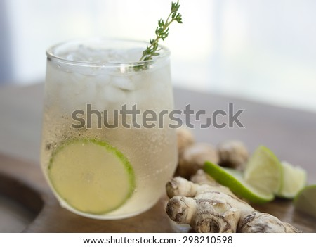 Ginger ale with fresh lime and thyme garnish.