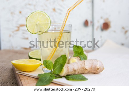 Ginger ale with lemon and mint to accelerate metabolism. Refreshing healthful beverage. - stock photo