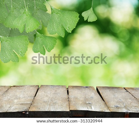 Ginkgo Biloba leaves with natural blurred background and a wooden table - stock photo