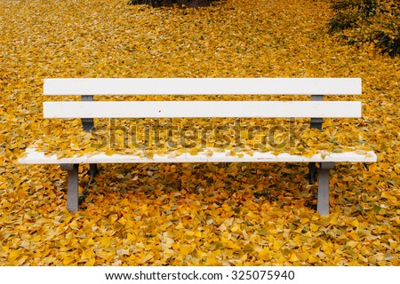 Ginkgo biloba or Maidenhair tree all over the bench in autumn park with yellow autumn leaves in abundance - stock photo