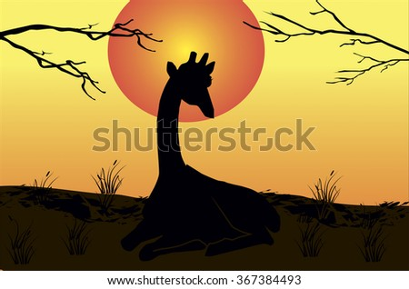 beautiful nature vector with trees silhouettes and a