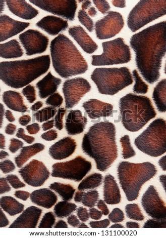 Giraffe skin Pattern texture - stock photo