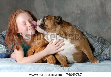 girl and her dog - pre teenage girl ready for cuddling with her dog - english bulldog