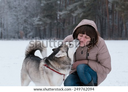 Girl and Husky. Siberian Husky kissing a girl in the face. - stock photo
