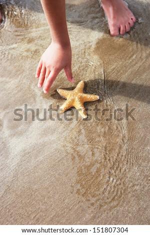 Girl Discovering Starfish On Beach - stock photo