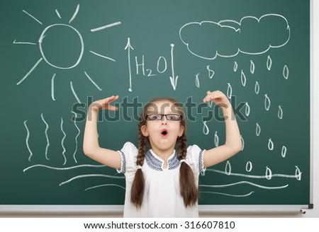 girl drawing water circulation on school board - stock photo