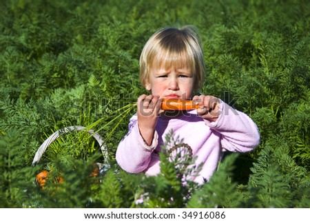 Girl eating carrots in a carrot field - stock photo