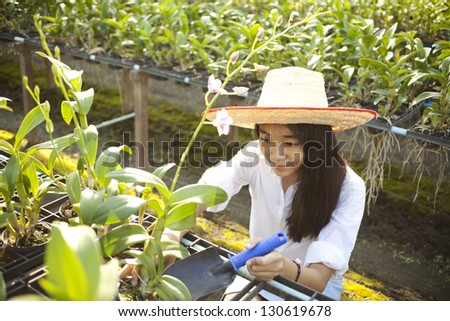 girl gardener, Young Asian girl wearing weave hat active in orchid farm - stock photo