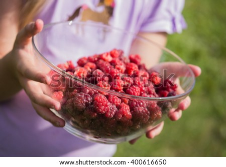girl holding a bowl with fresh, juicy raspberry in her hands - stock photo