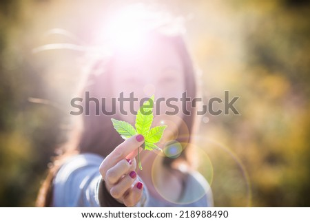 Girl Holding Marijuana Leaf. Pretty girl in outdoor late afternoon light holding a pot leaf, with lens flare. - stock photo