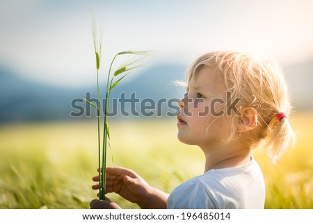 Girl in a wheat field A little girl playing in a wheat field - stock photo