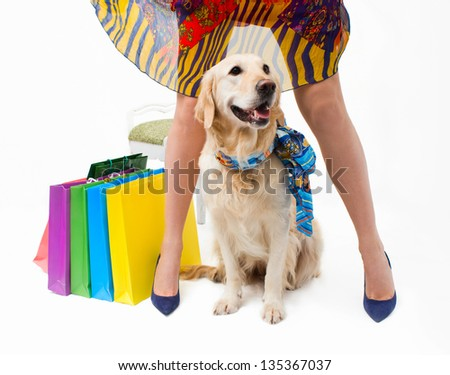 Girl in dress with the dog and packages