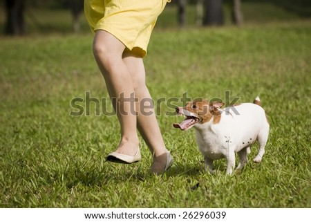 girl in the outdoor with dog - stock photo