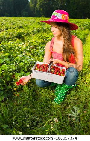 Girl inspect strawberries on field and she pick ripe ones to the basket - stock photo