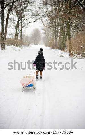 Girl is dragging her bobsleigh in the snow-covered forest in the winter - stock photo