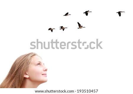 Girl looking upwards at flying birds isolated on a white background