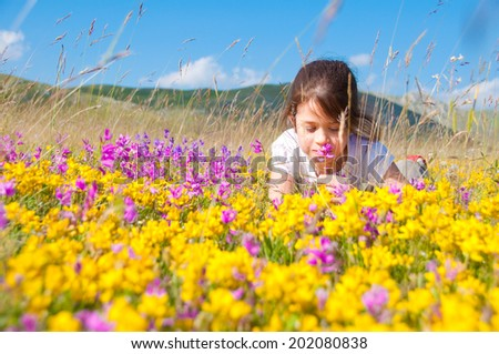 Girl lying in a field of wild flowers - stock photo