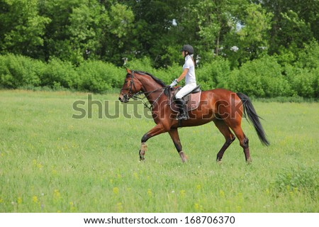 Girl rider trains the horse in the riding course - stock photo