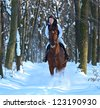 girl riding a horse in winter - stock photo