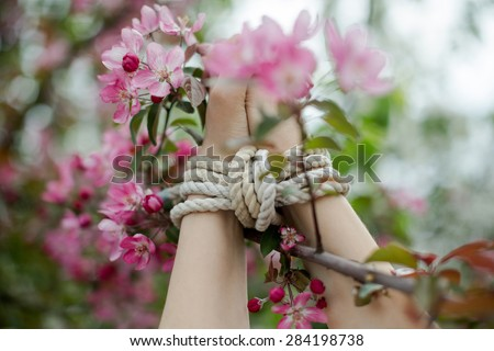 Girl's hands tied up in Japanese style of bondage or BDSM, Shibari - stock photo