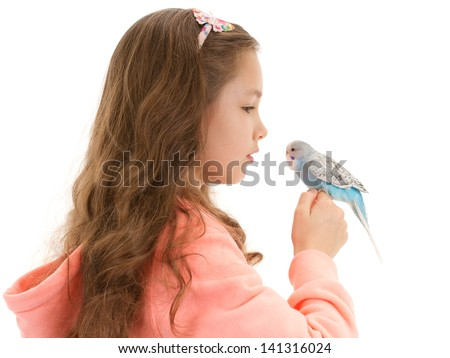 Girl speaking to tame pet bird budgerigar sitting on finger. Isolated on white. - stock photo