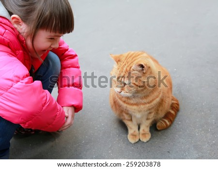 Girl speaking with cat on the street - stock photo