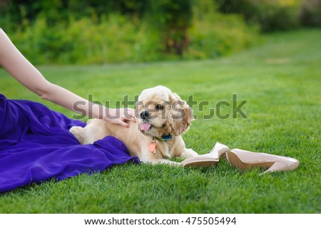 Girl stroking a dog.