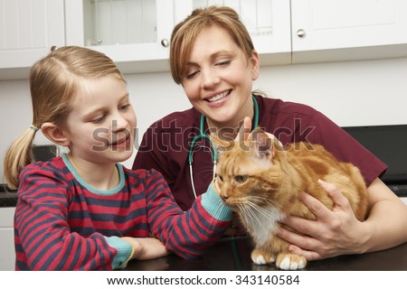 Girl Taking Cat To Vet To Be Examined - stock photo