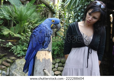 girl talkincurious girl communicates with a big blue parrotg to a parrot - stock photo