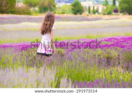 Girl walking in lavender field composed of different types of lavender - stock photo