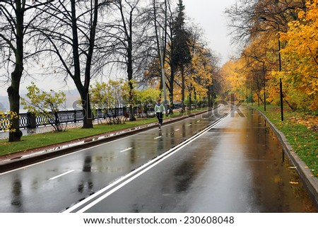 Girl walking on the wet road among an autumn forest covered with yellow leaves - stock photo
