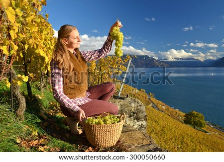 Girl with a basket full of grapes. Lavaux region, Switzerland - stock photo