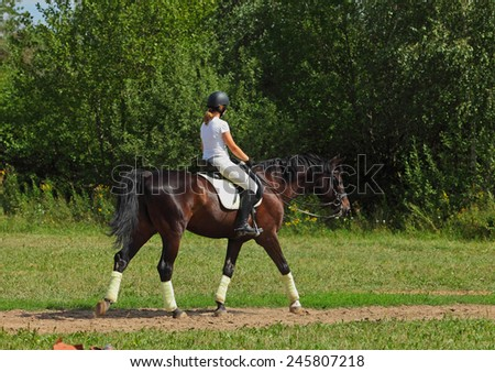 Girl with thoroughbred stallion walking in a meadow - stock photo