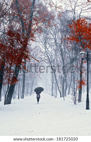 Girl with umbrella walking on the path. Winter. Trees with red leafs. - stock photo