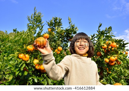 Girls enjoy picking oranges