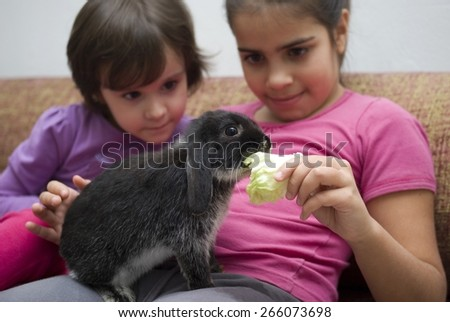 Girls playing with rabbit at home