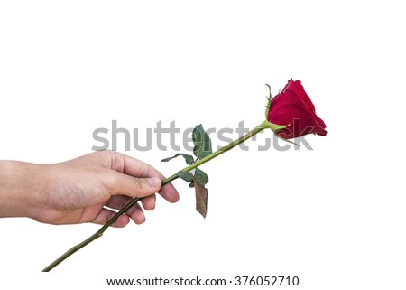 give rose to you