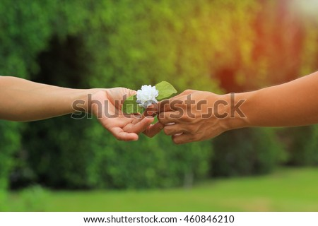 Giving a Jasmine flowers, This flower is symbol of Thailand Mother's Day, Sign of Mother day in Thailand