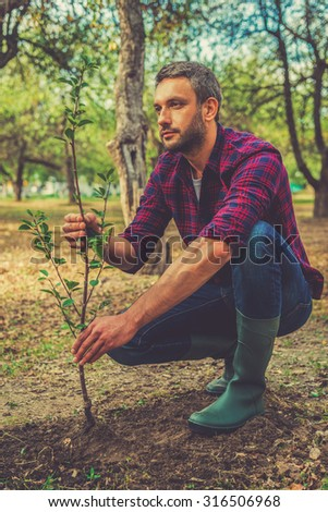 Giving a new life. Thoughtful young man planting the tree while working in the garden