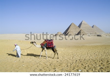 Giza camel driver - stock photo