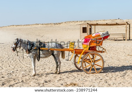 GIZA, EGYPT - NOV 23, 2014: Horse carriage at Giza Necropolis, Egypt. UNESCO World Heritage