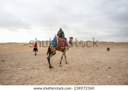 GIZA, EGYPT - NOV 23, 2014: Unidentified Egyptian man rides a camel in Giza Necropolis, Egypt. UNESCO World Heritage