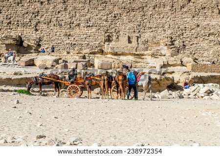 GIZA, EGYPT - NOV 23, 2014: Unidentified Egyptian people ride horse carriage at Giza Necropolis, Egypt. UNESCO World Heritage